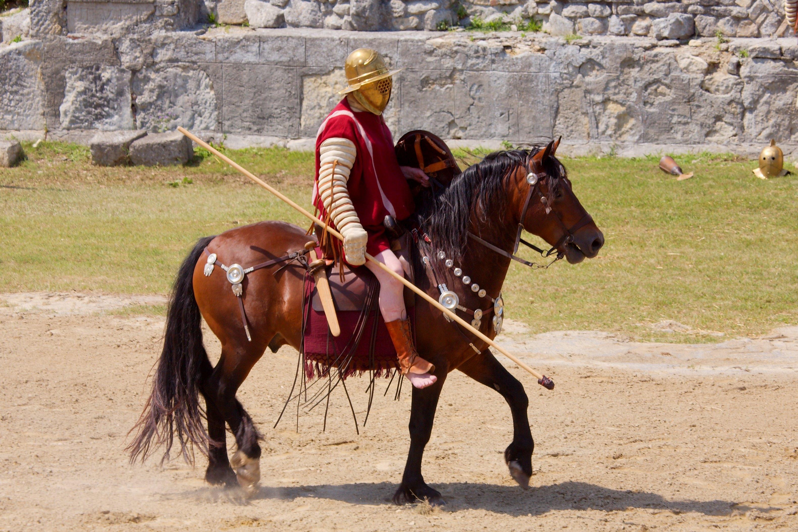 ファイル gladiator eques 01 jpg wikipedia