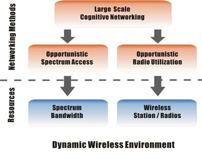 Large Scale Cognitive Wireless Networking Concept.jpg