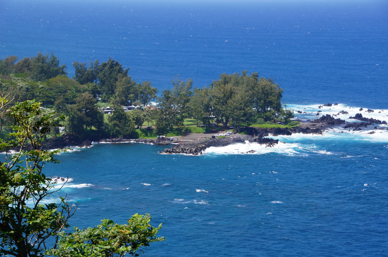 Hawaii Big Island Coffee Farm Deportation Hollywood