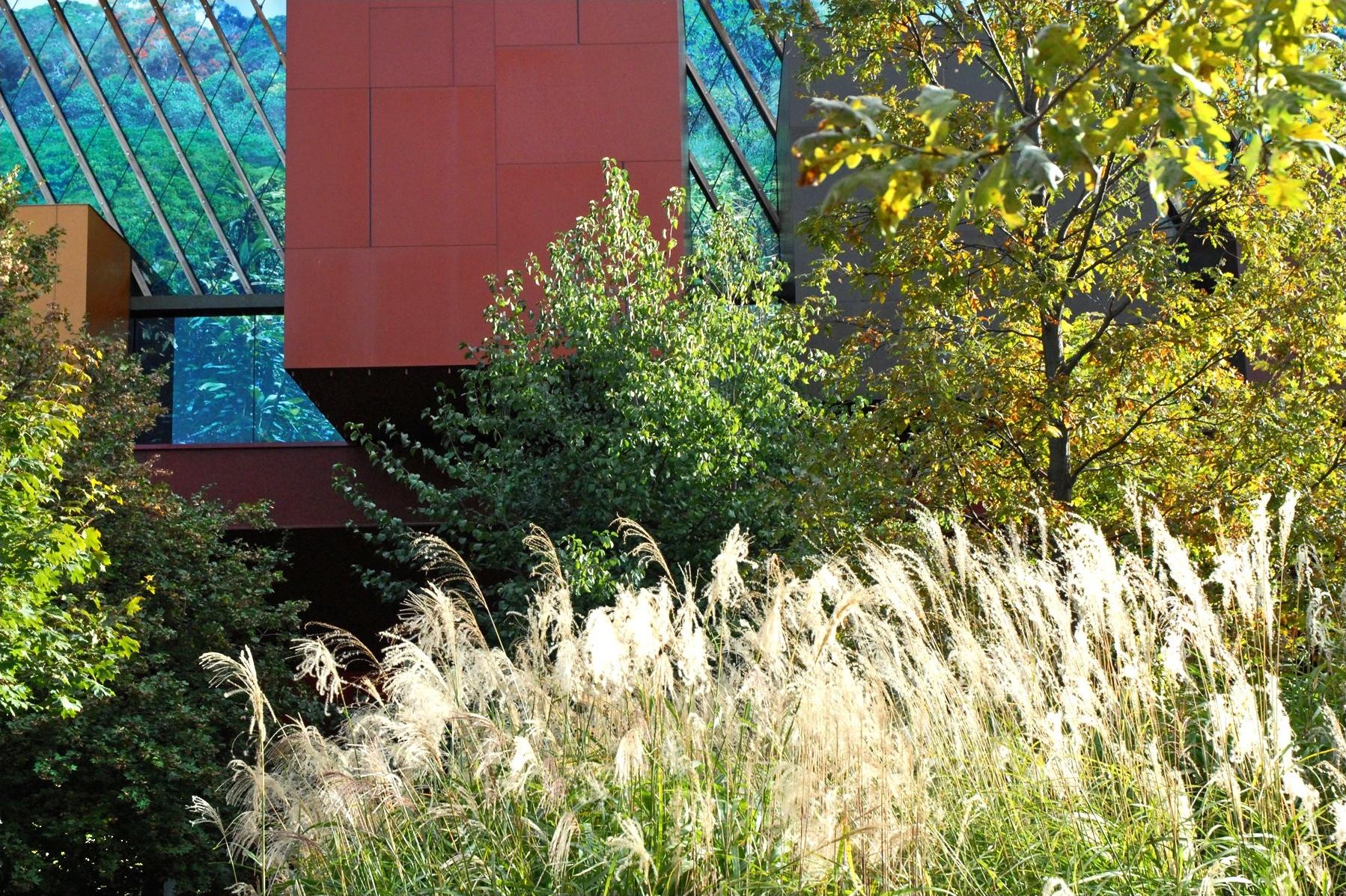 File le mus e du quai branly paris wikipedia for Le jardin du quai