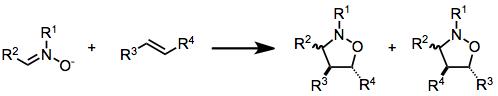 Nitrone olefin cycloaddition