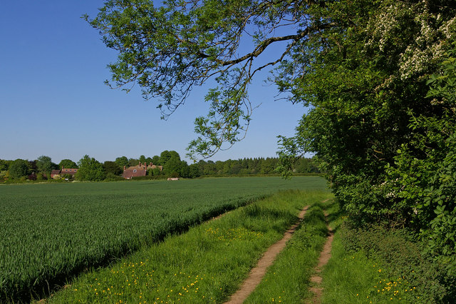 North Downs Way south of Knockholt Pound - geograph.org.uk - 1902179