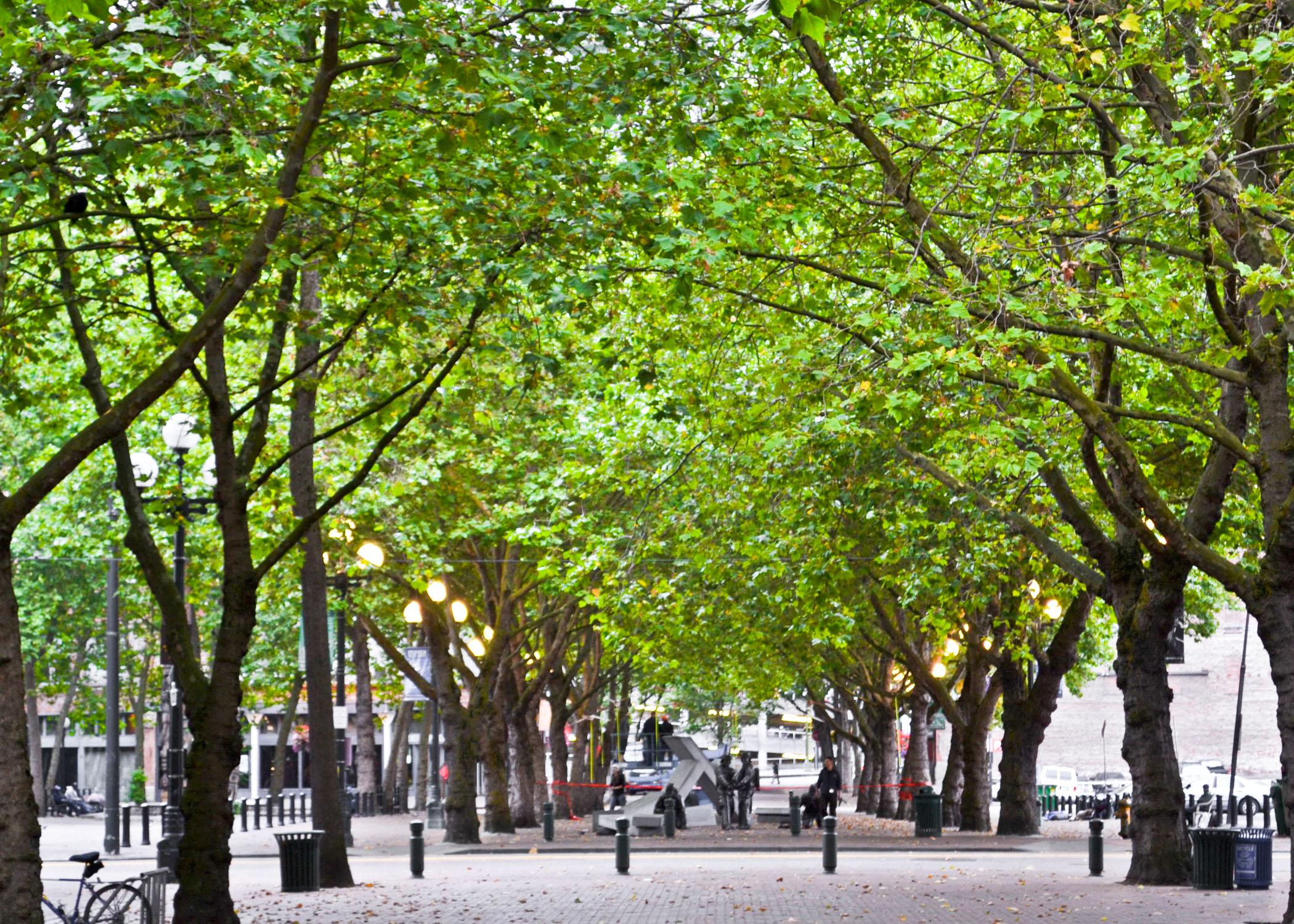 File Occidental Park Jpg Wikimedia Commons