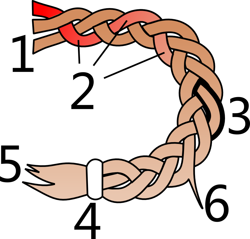 File Parts Of A Hair Braid Png Wikimedia Commons