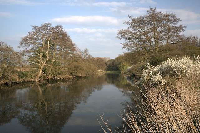 River Avon - geograph.org.uk - 1263494