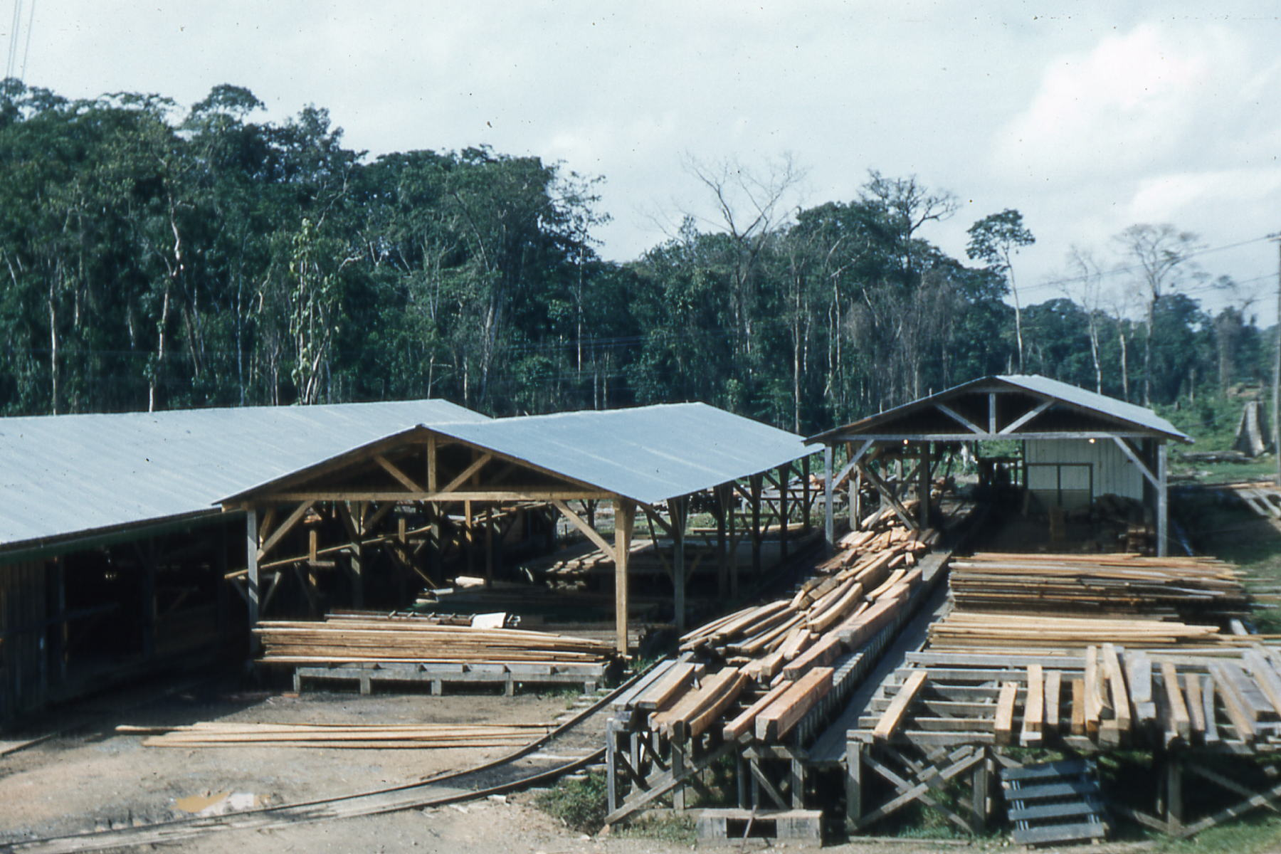 File Saw Mill on la rosita