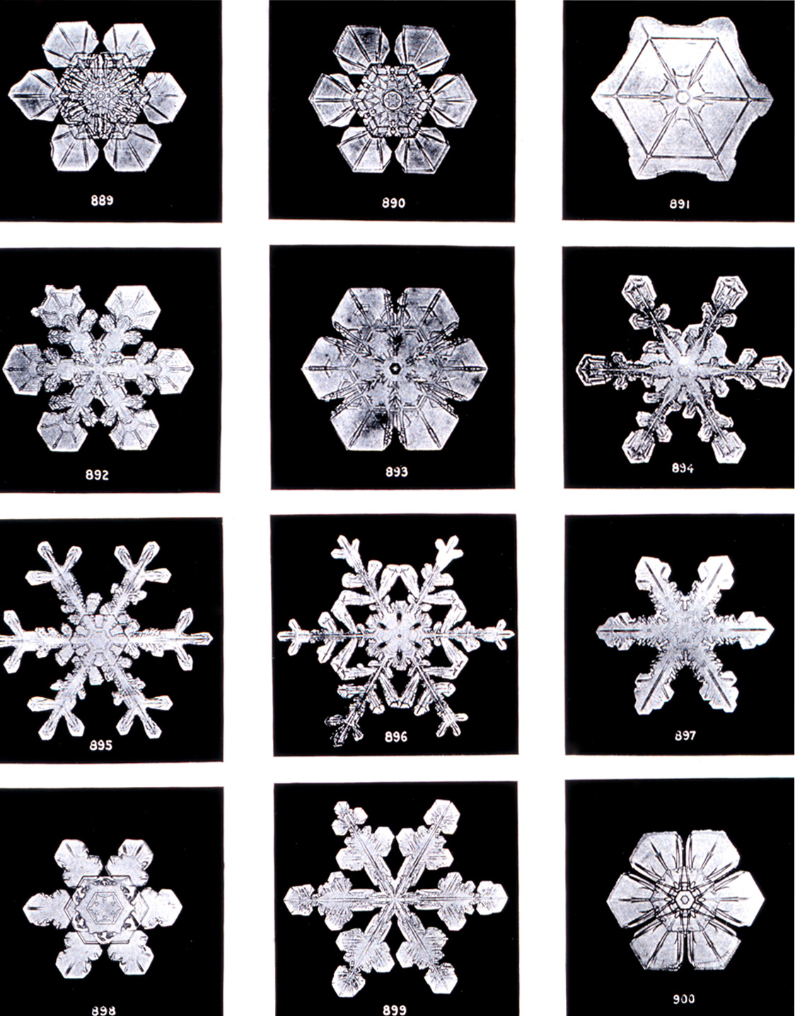 Snowflakes forming complex symmetrical patterns is an example of emergence in a physical system.