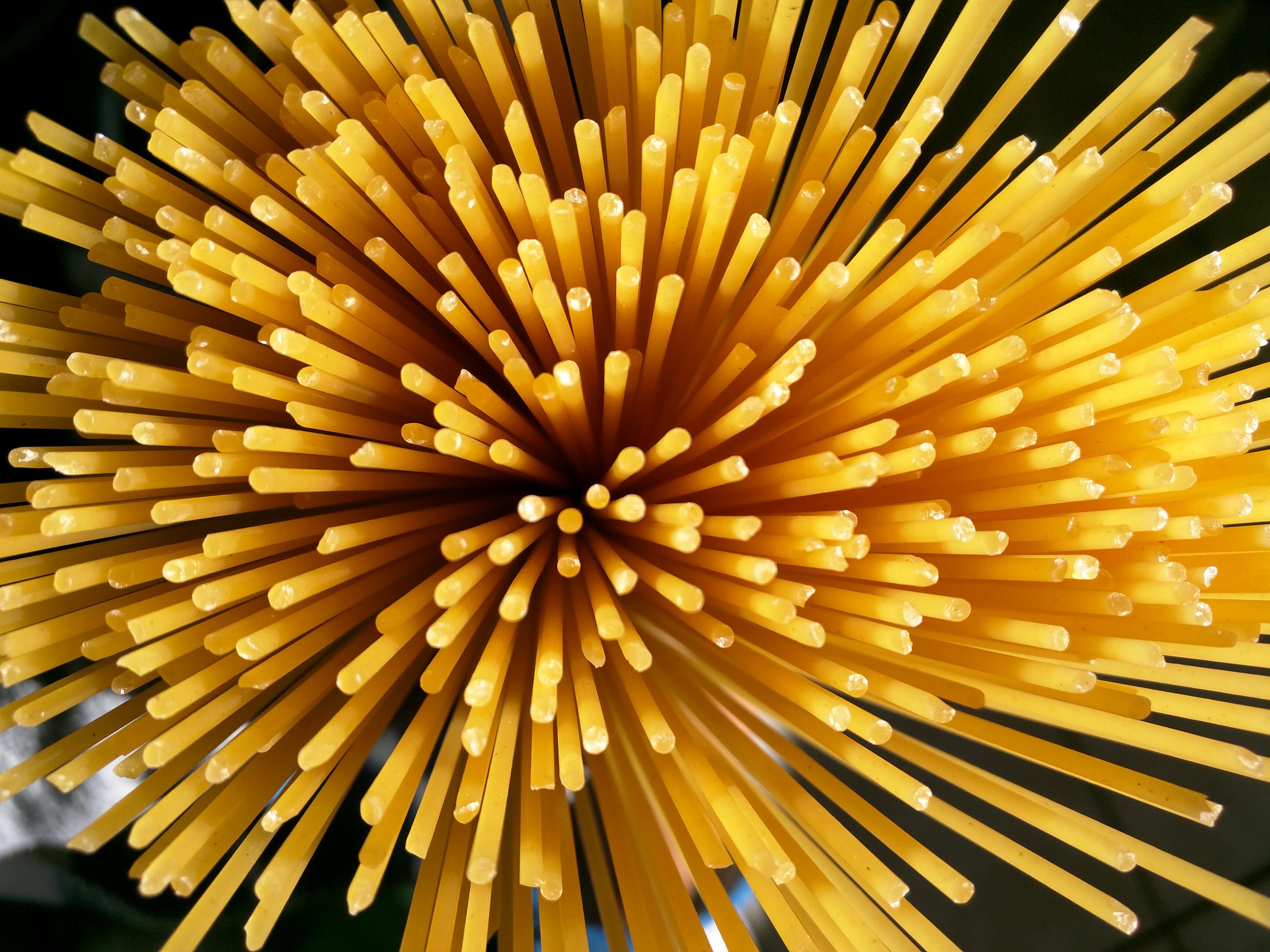 ποια ζυμαρικά με ποια σάλτσα: σπαγκέτι