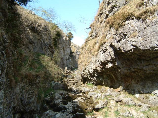 Troller's Ghyll - geograph.org.uk - 152