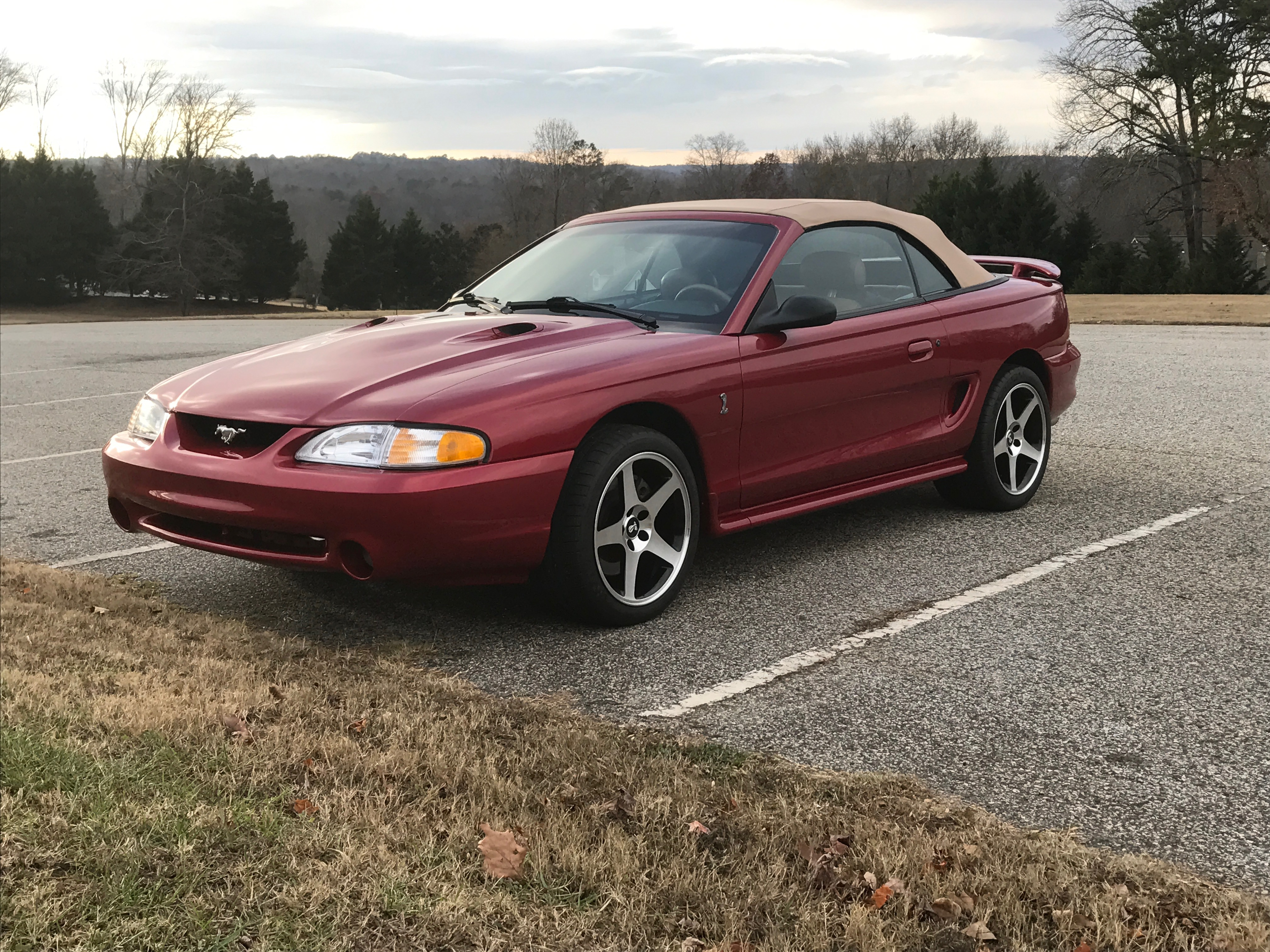 Ford Mustang Svt Cobra Wikipedia Power Windows Page1 Forums At Modified Mustangs 1996 Front
