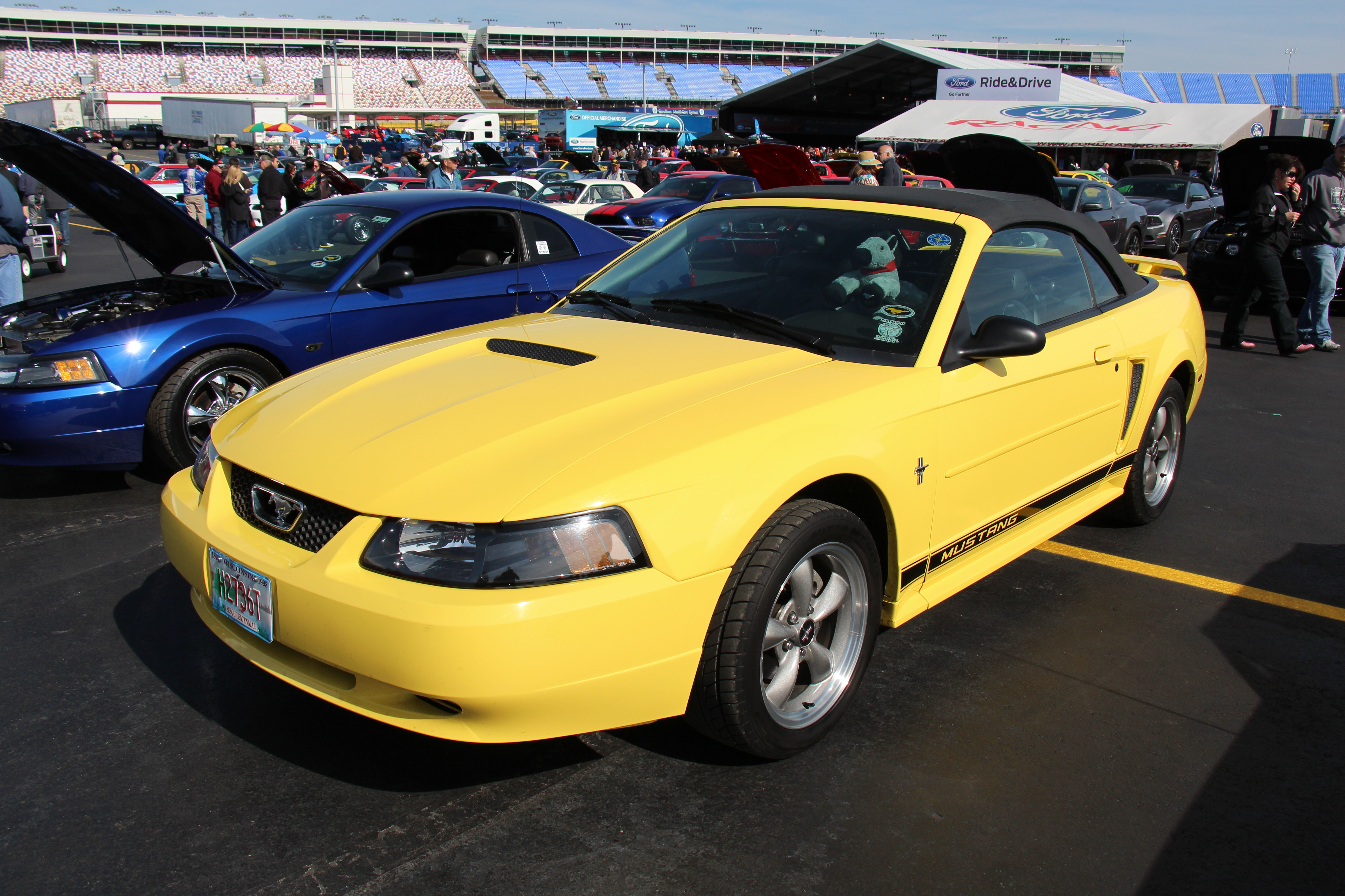 File:2000 Ford Mustang V6 Convertible (14420770072).jpg - Wikimedia Commons