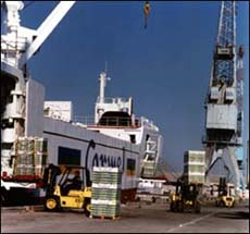 טעינת מטען חקלאי בנמל אשדוד