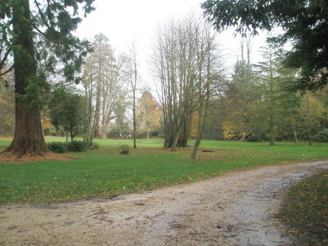 Autumn at Staunton Country Park (3) - geograph.org.uk - 1591826