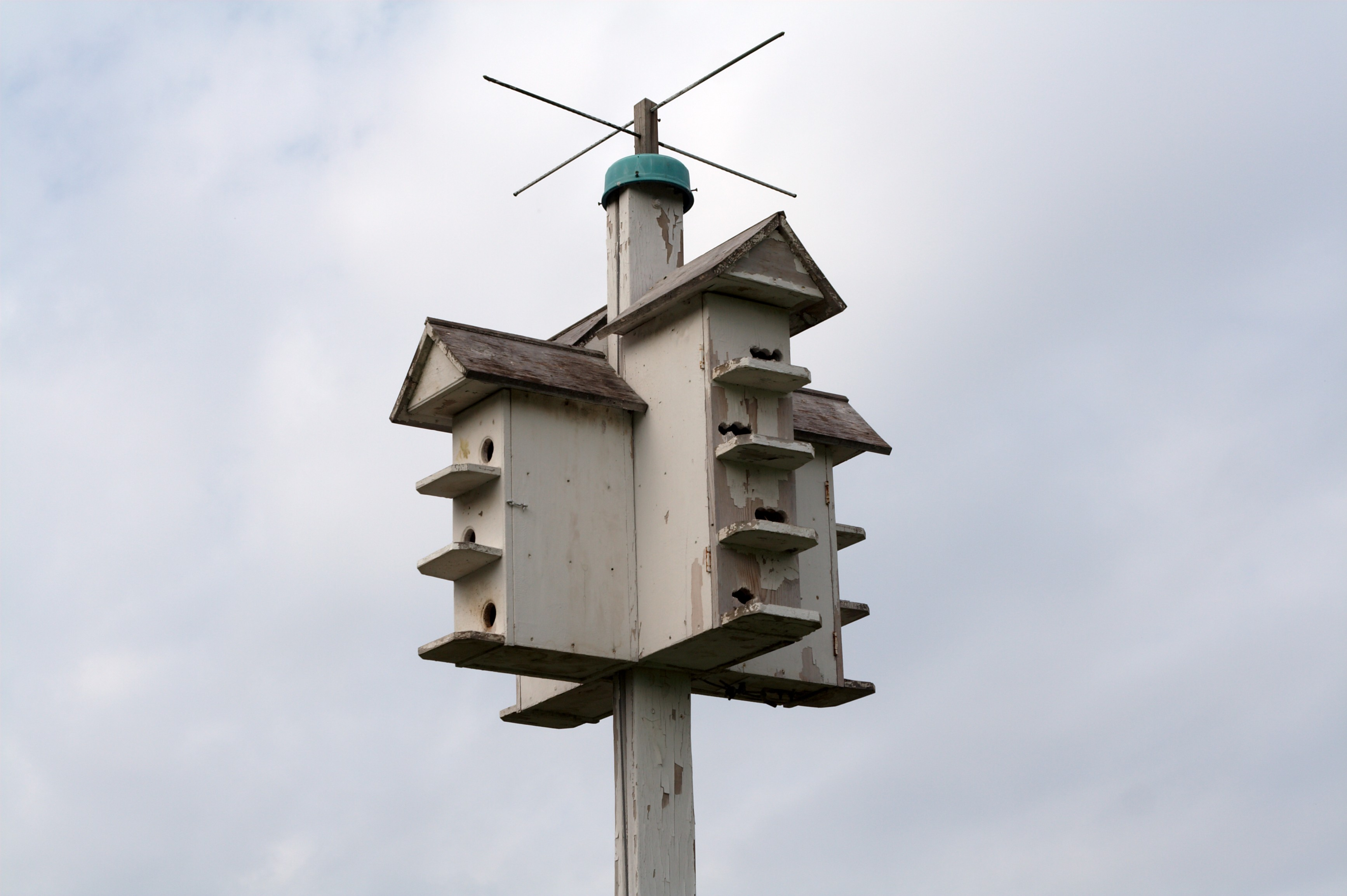 File Bird House Wikimedia Commons