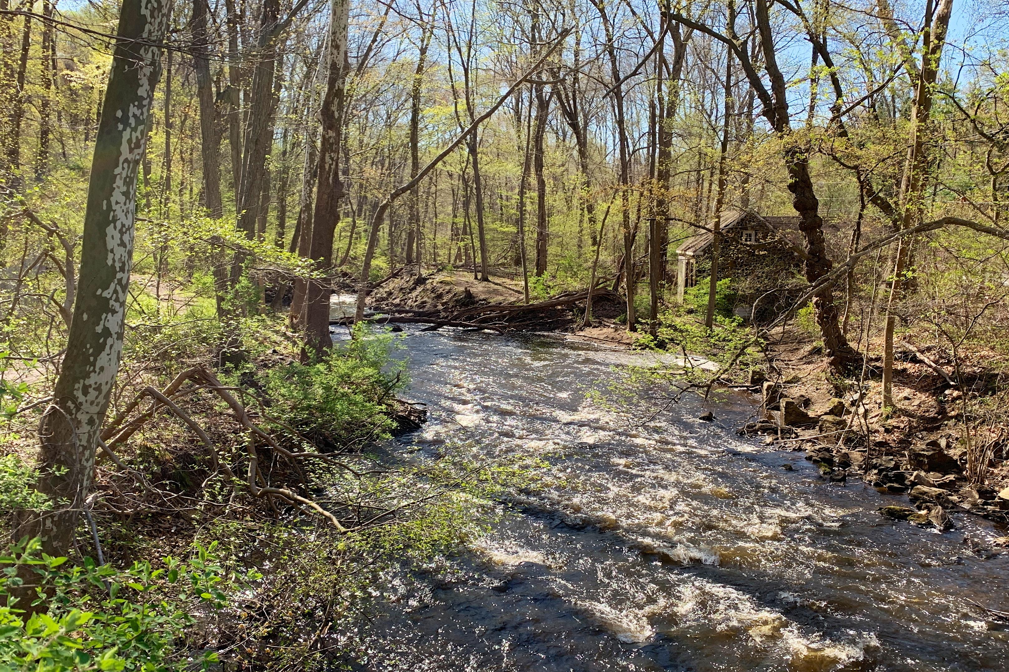 Black River County Park Wikipedia