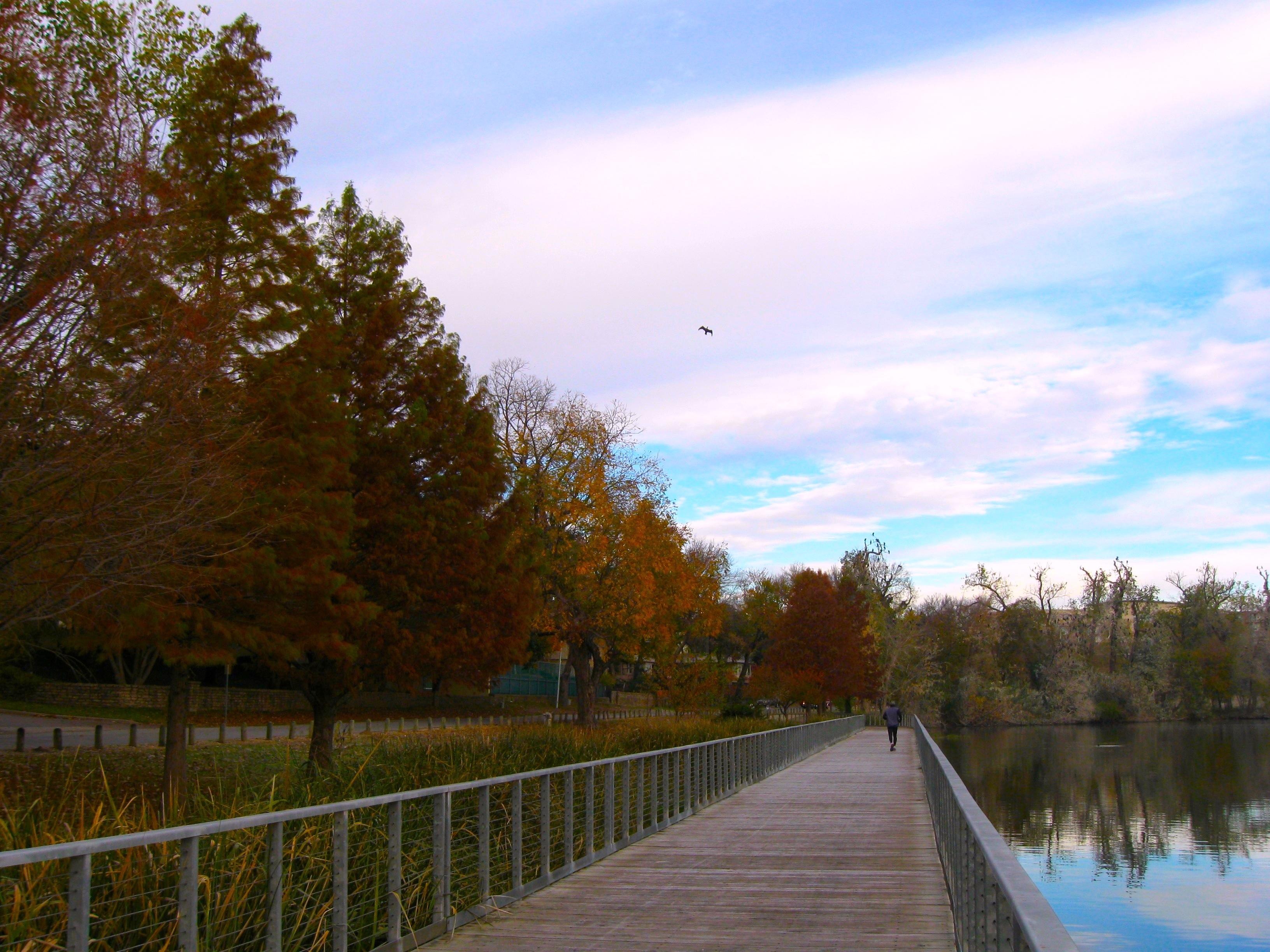 Board Walk, White Rock Lake Park - panoramio.jpg