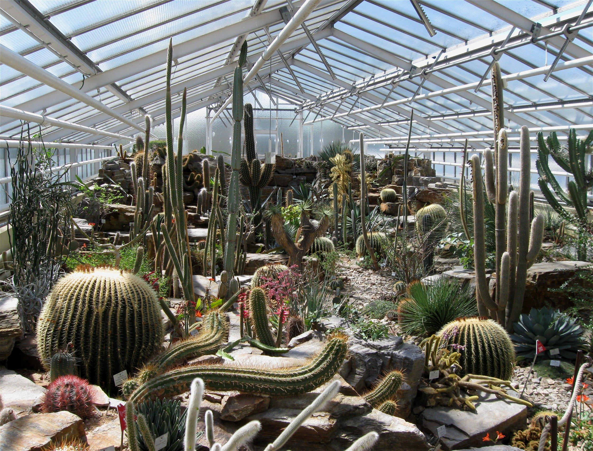 Botanischer Garten München | openbm.info