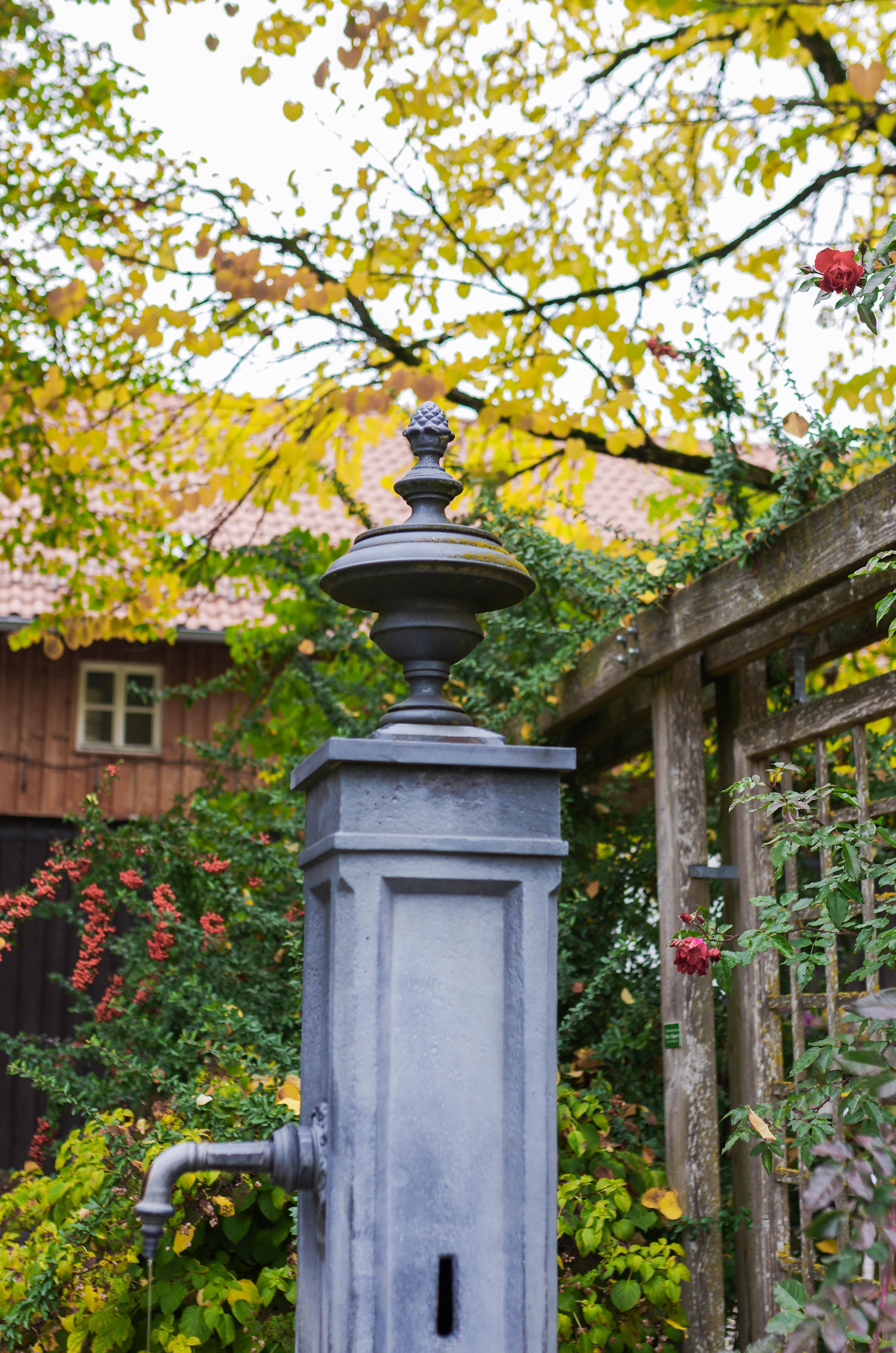 Filebrunnen Im Botanischen Garten Augsburg 008jpg Wikimedia