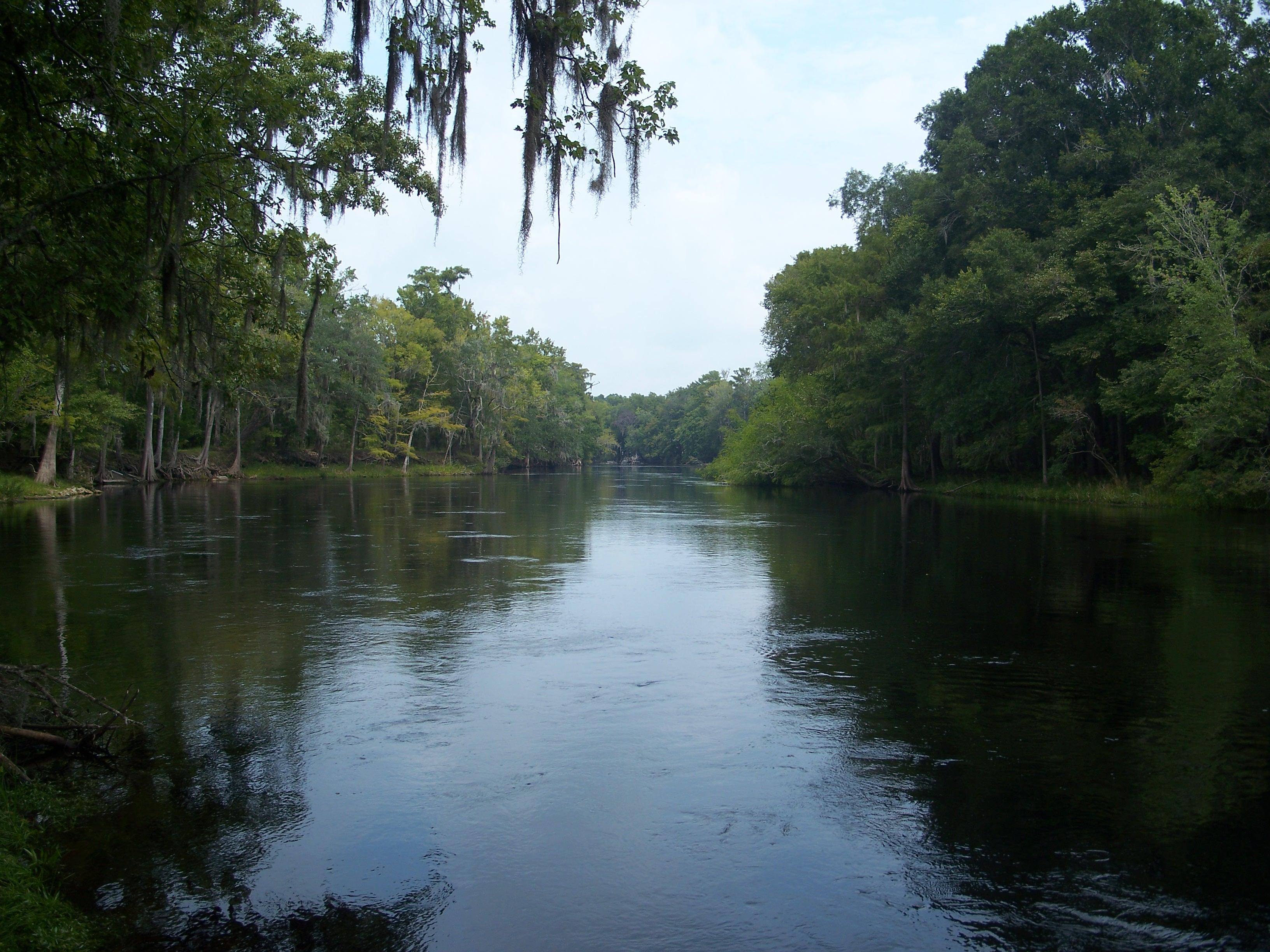 http://upload.wikimedia.org/wikipedia/commons/c/c3/CR_47_FL_Suwannee_River_north01.jpg