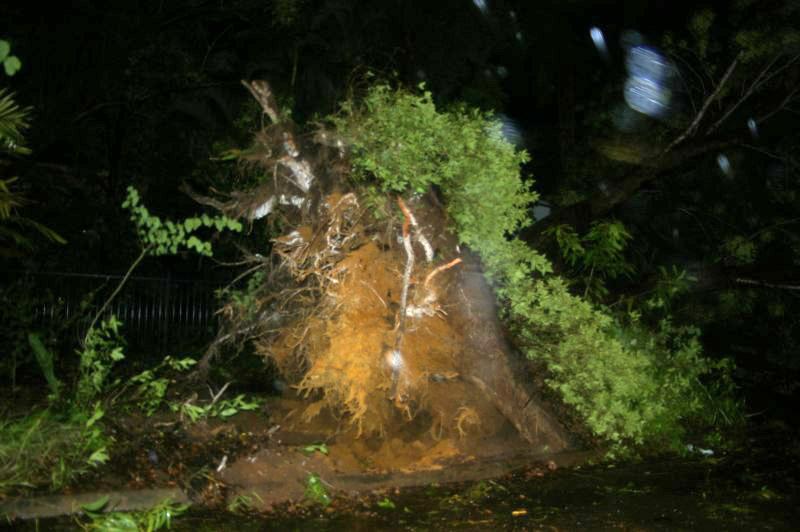 File:Cyclone Helen 3943.jpg