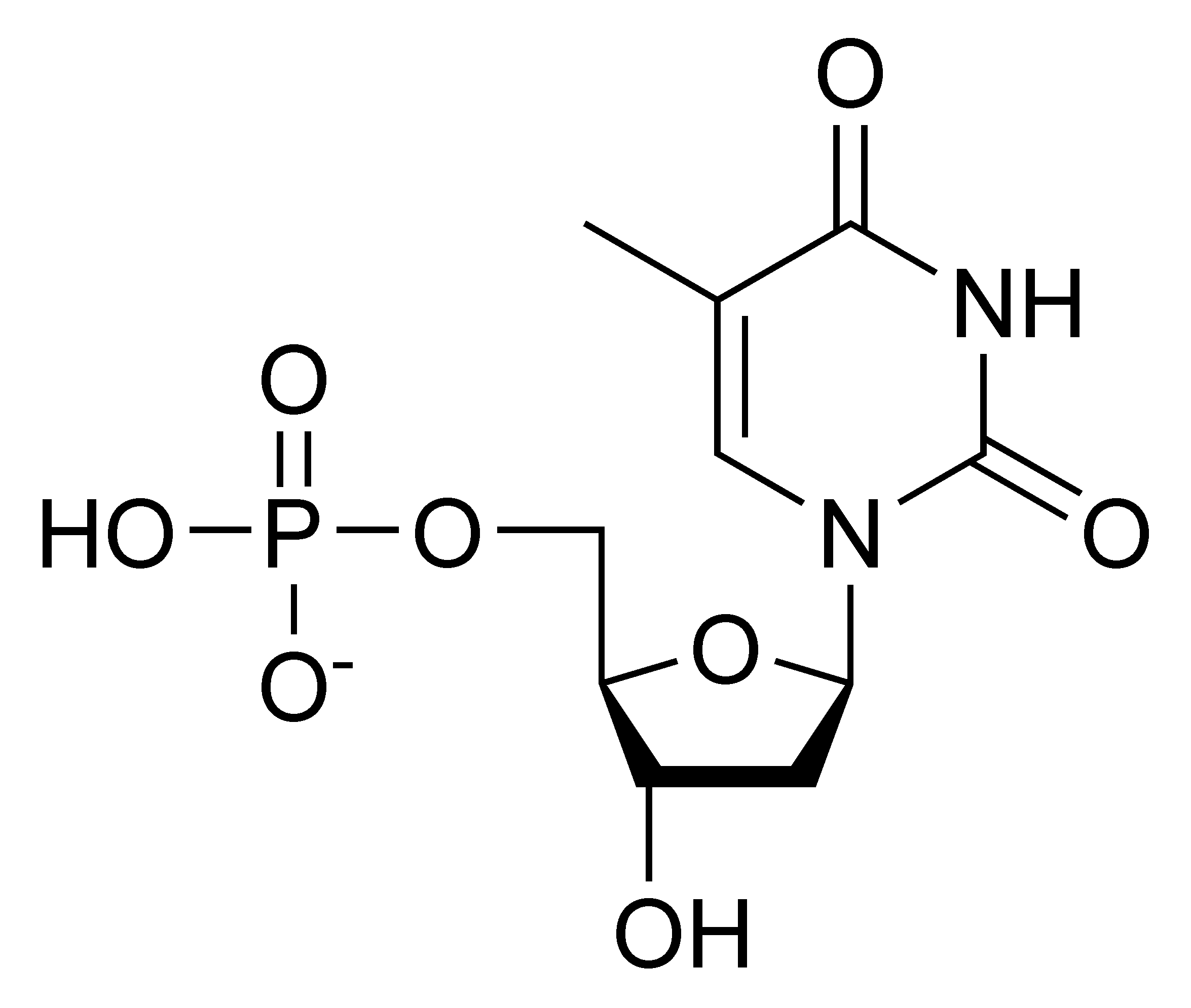 Chemical structure of deoxythymidine monophosphate