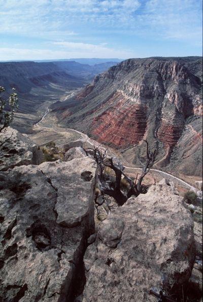 File:Grand canyon-parachant nm.jpg