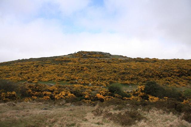 Hartland Tor - geograph.org.uk - 1288248