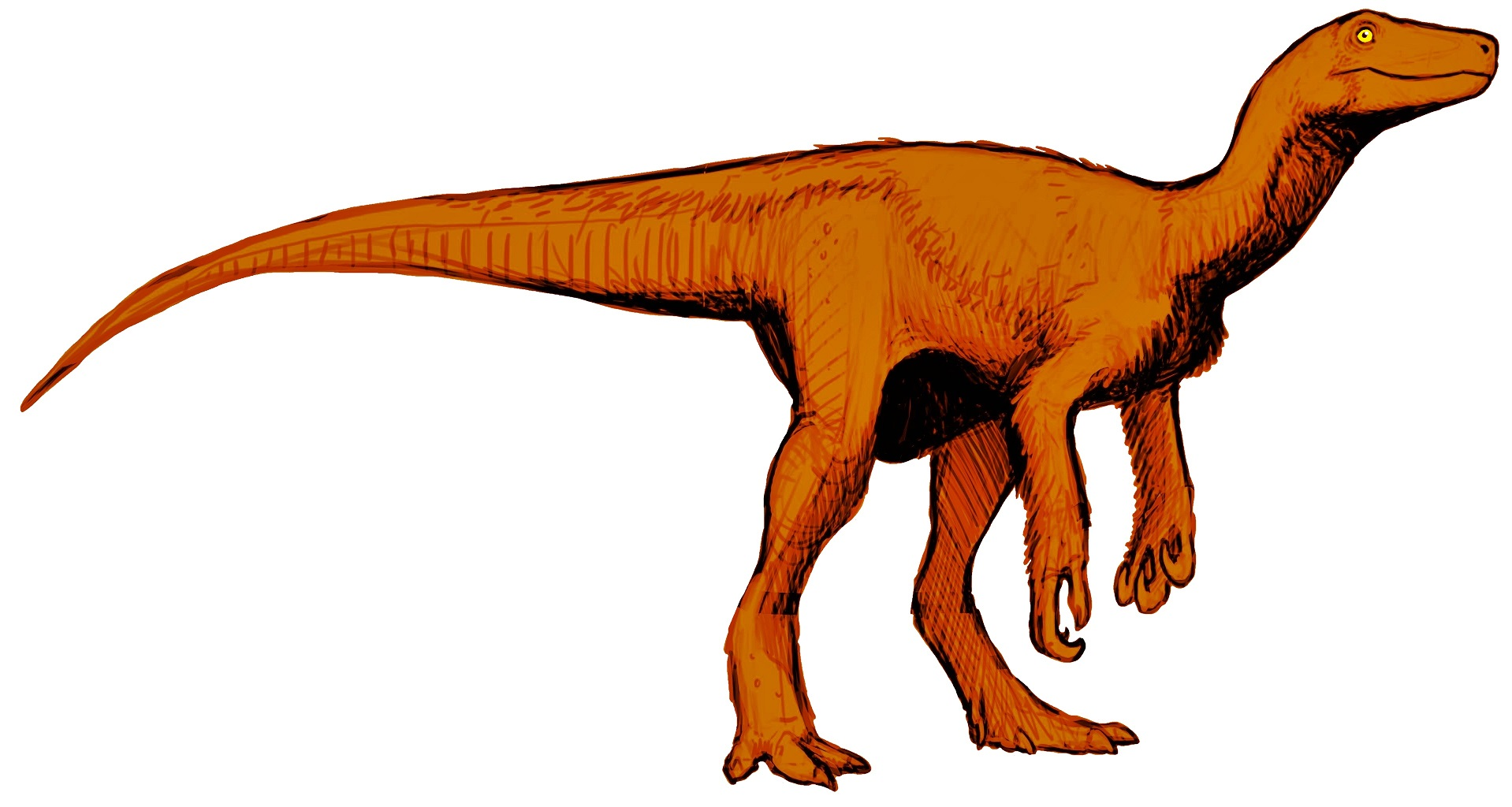 Fileherrerasaurus Reconstruction Flippedjpg Wikimedia Commons