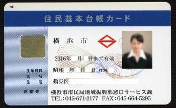 Photo identification - Wikipedia