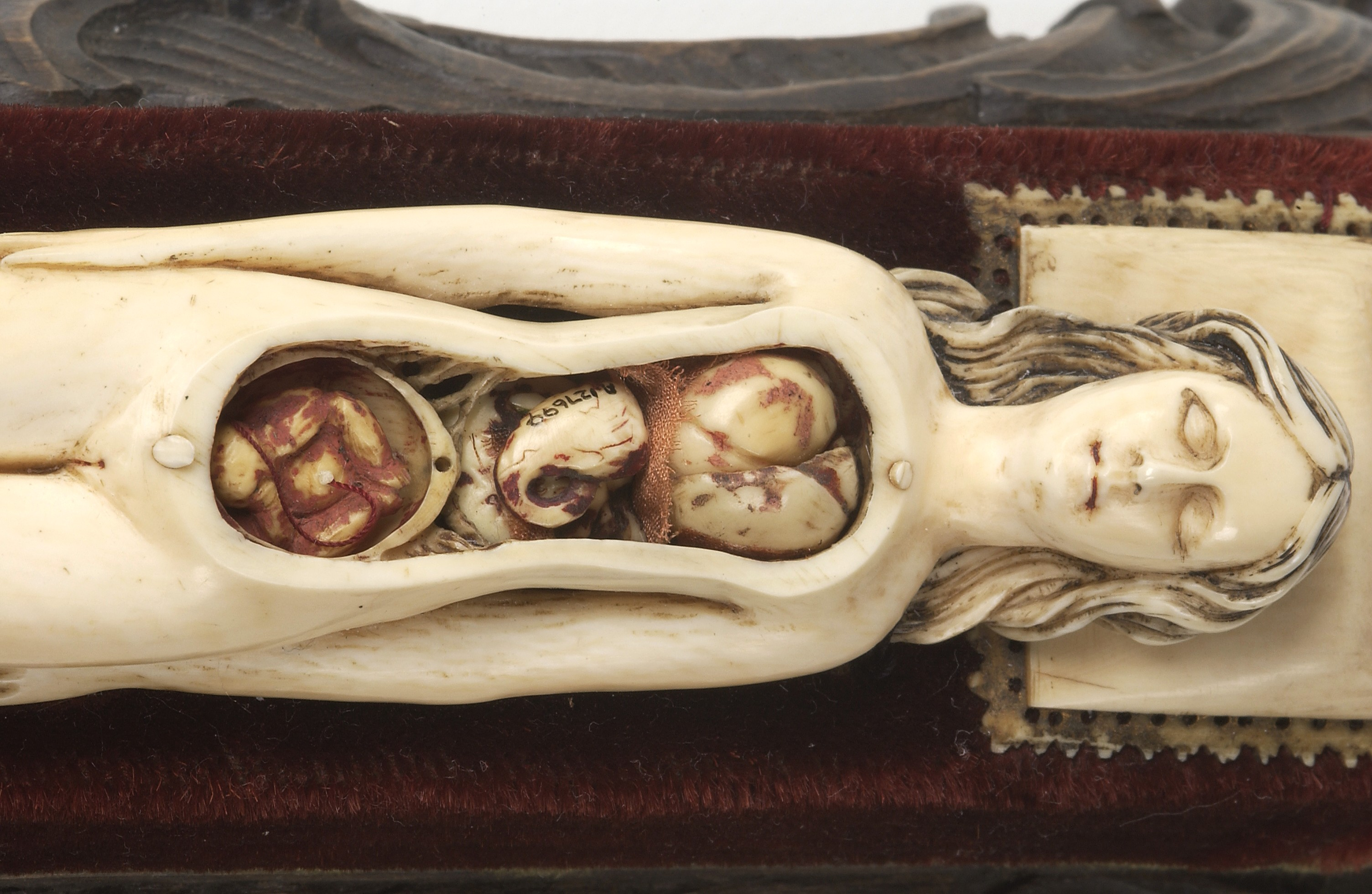 File:Ivory anatomical figure of a pregnant woman Wellcome L0037290 ...