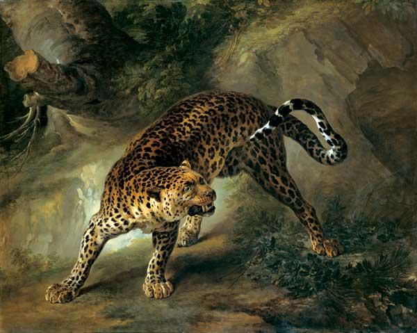 Jean-Baptiste Oudry Leopard, 1741
