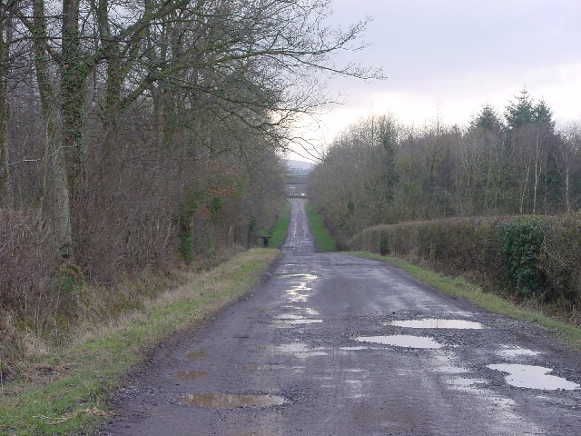 Footpath by halls lane