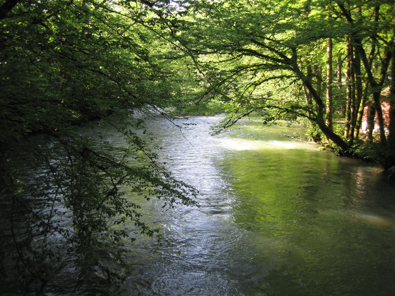 Description lison (rivière) 0017