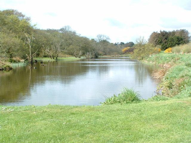 File logie fishing pond for Pond fish uk