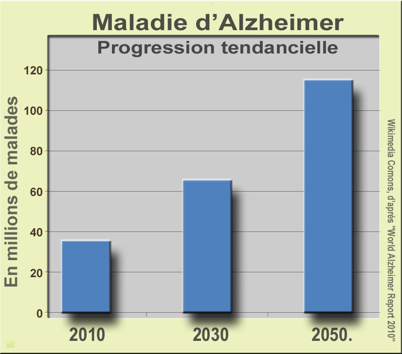 File Maladie Alzheimer1 Jpg Wikimedia Commons