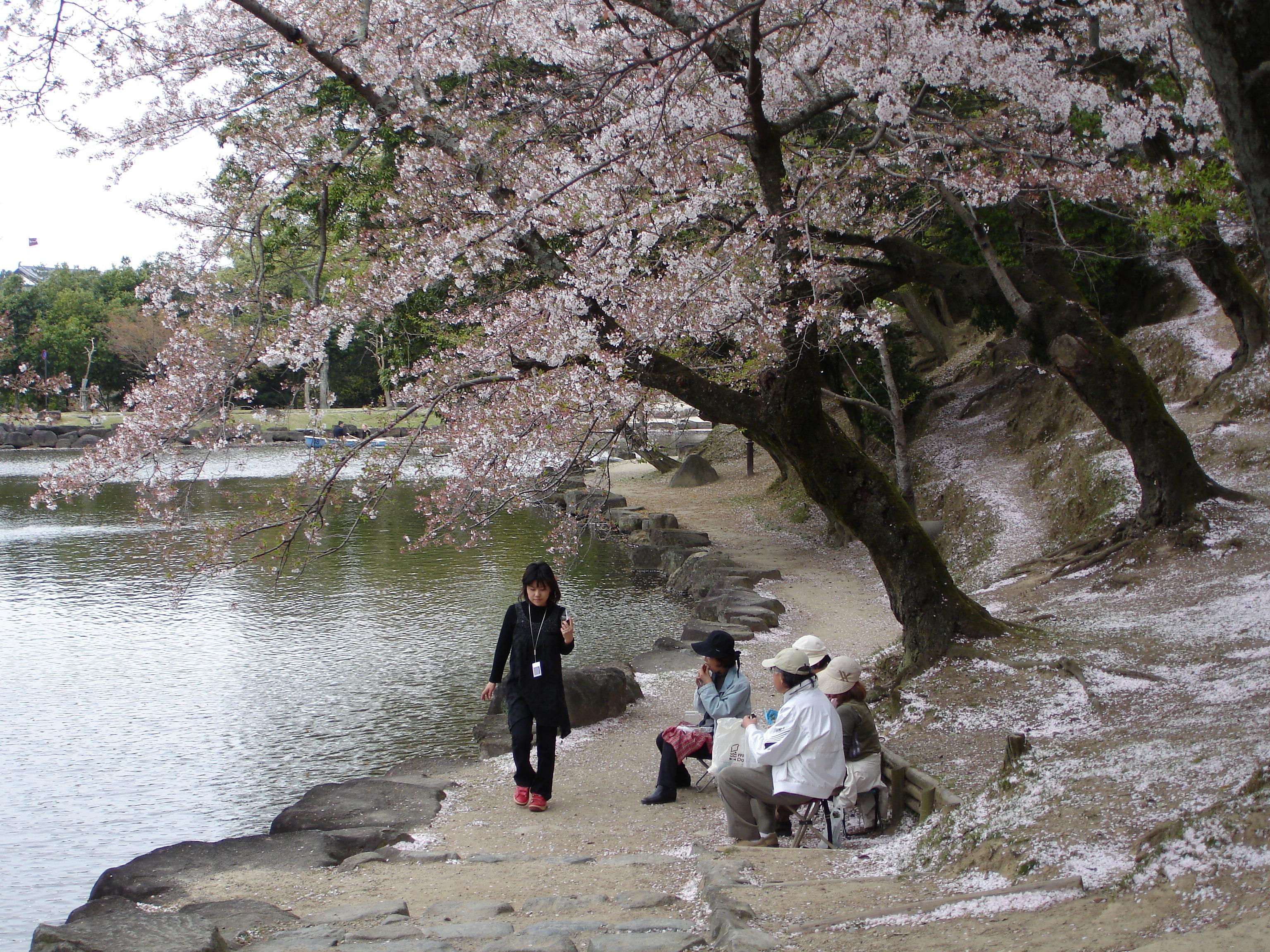 Nara Japan  city photos : Description Nara Japan 3