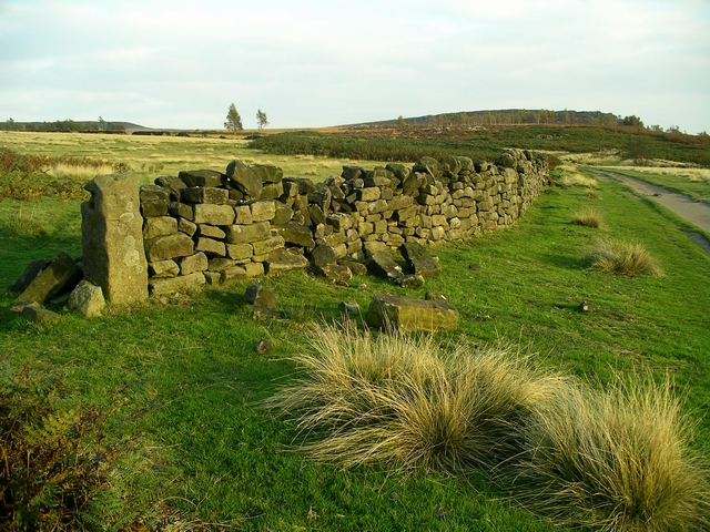 Old wall - geograph.org.uk - 577185