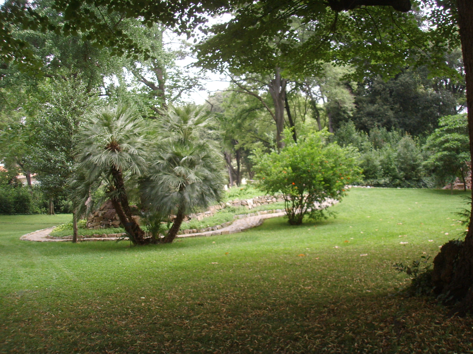 File palazzo della gherardesca giardino 03 jpg - Giardino in inglese ...