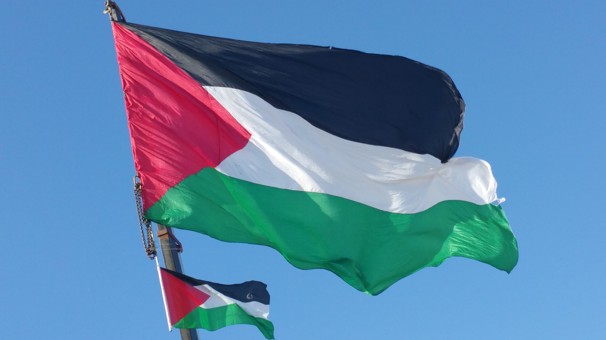 Flag of Palestine Wikiwand