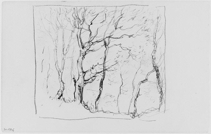 File:Trees (from Sketchbook) MET 263357.jpg
