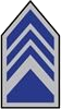 AFJROTC COL insignia.png