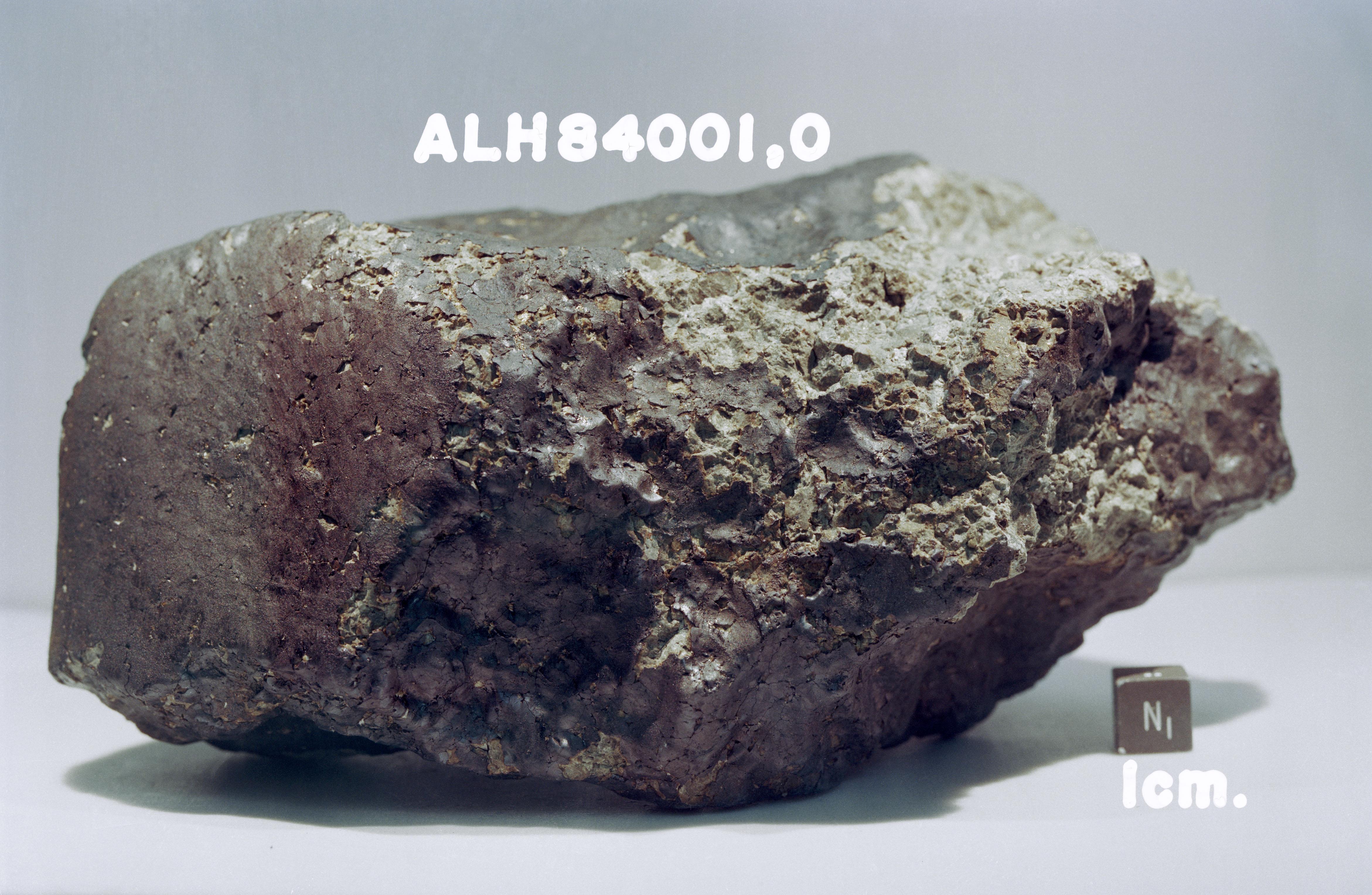 File:ALH84001.jpg