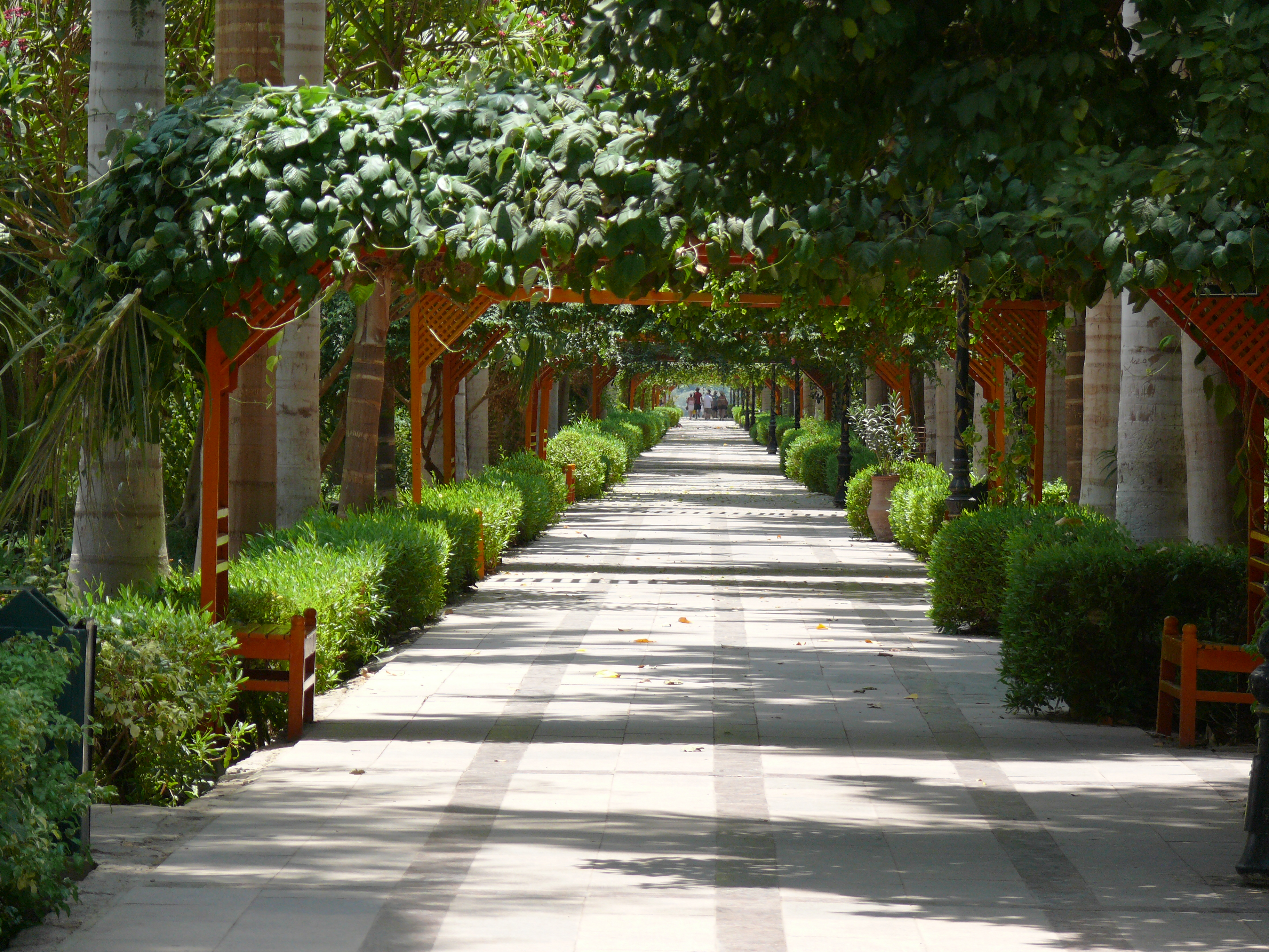 File:Aswan Botanical Garden 001.jpg - Wikimedia Commons