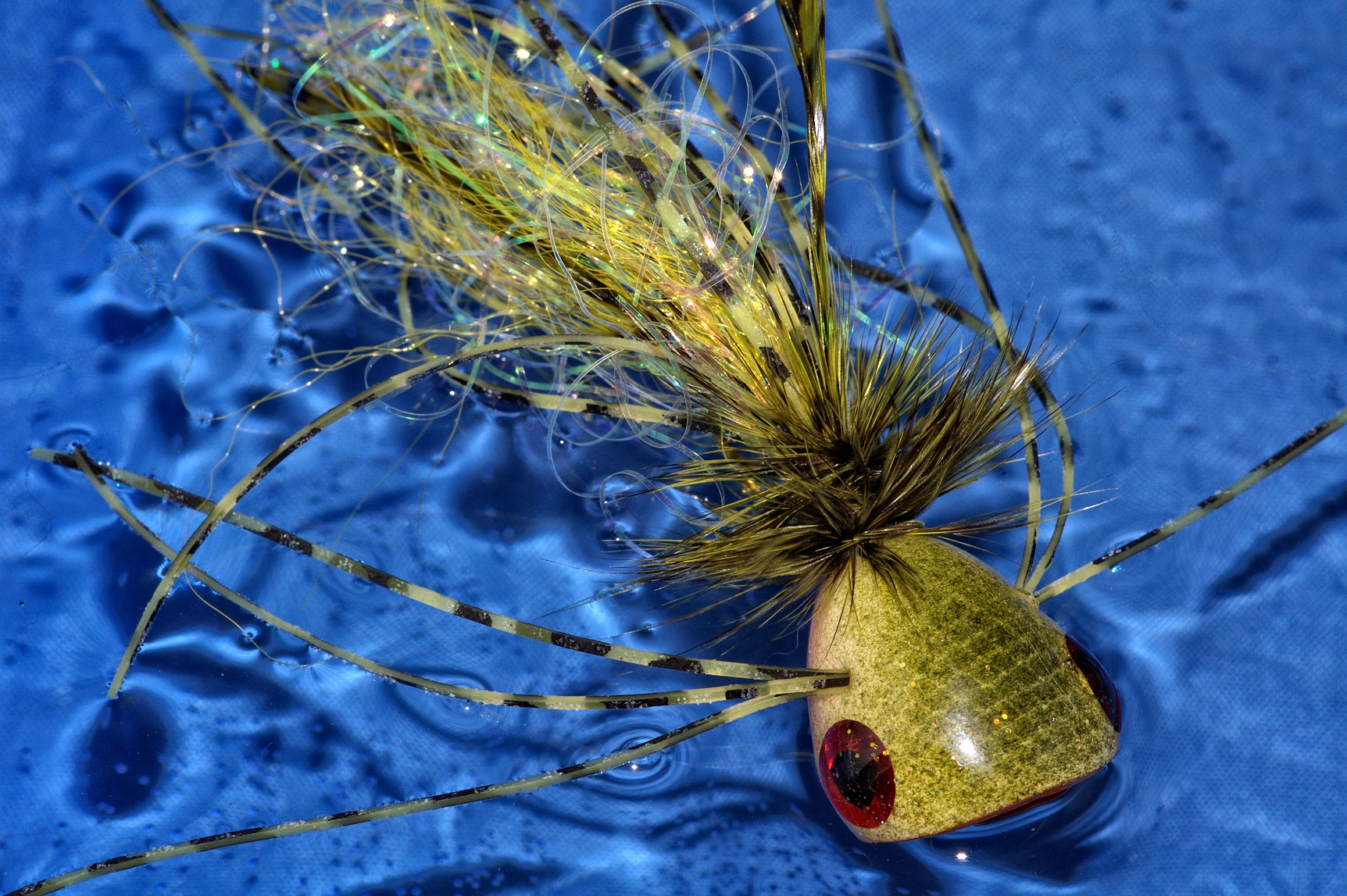 File bass wikimedia commons for Fly fishing poppers