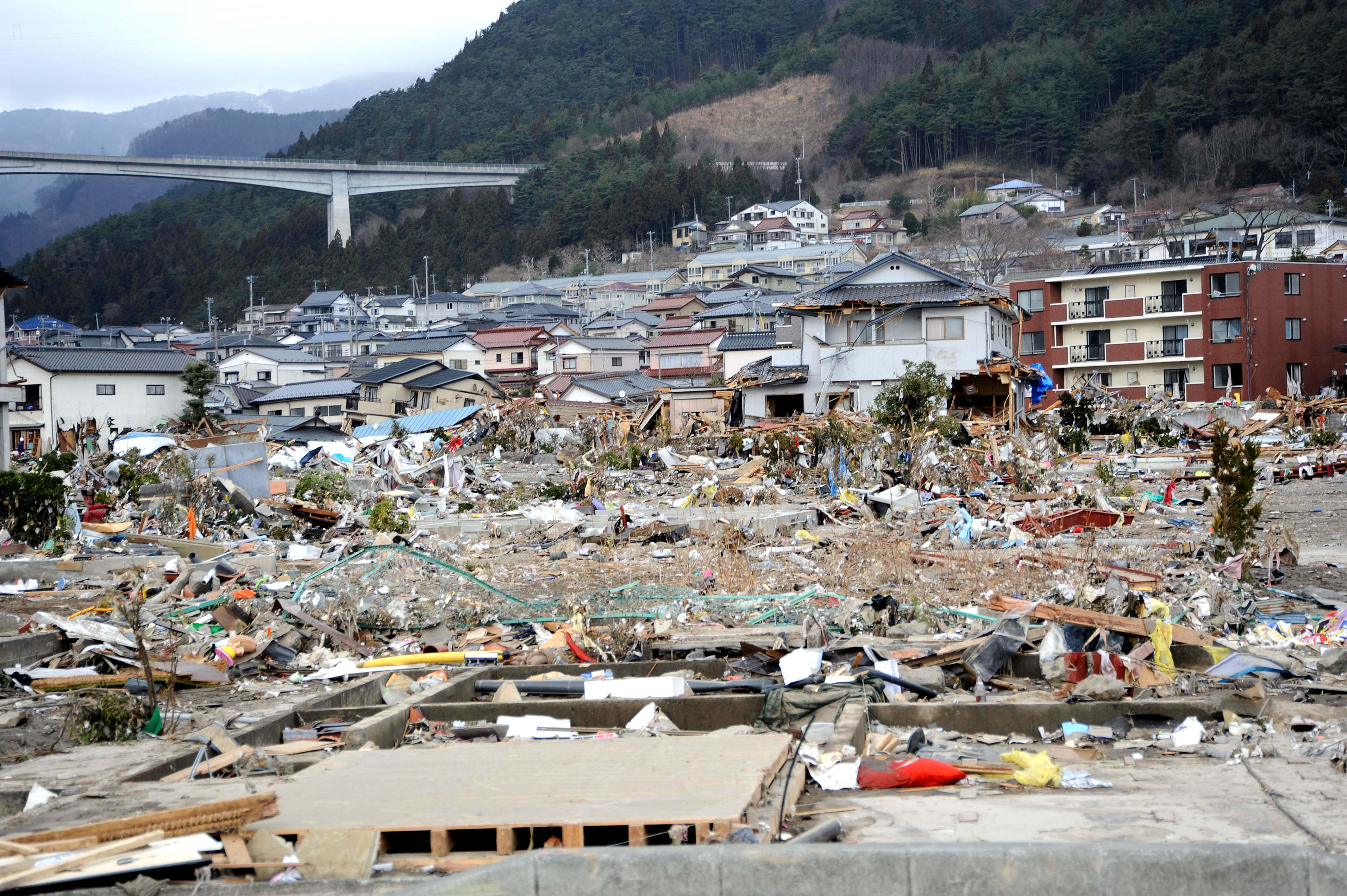 tsunami description essay Tsunami is a japanese word meaning very tall tidal or harbor waves the tsunami that took place around 630 am on 26th december, 2006 was caused by a massive under water earthquake near sumatra in indonesia.