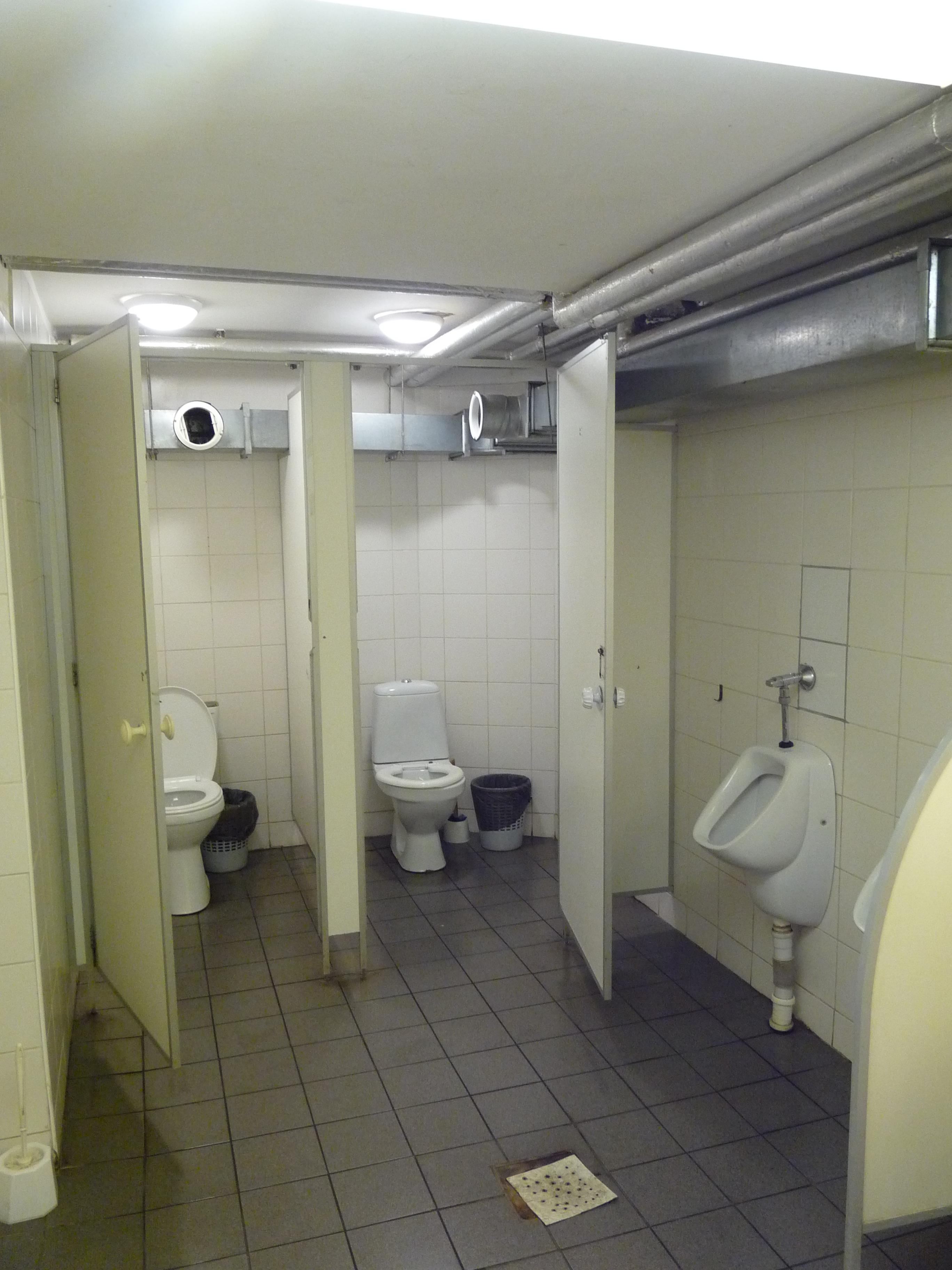 New Toilet Design Squat
