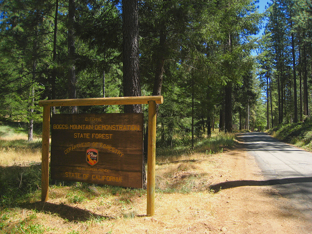 Entrance to Boggs Mountain Demonstration State Forest on Forestry Rd., Cobb, CA