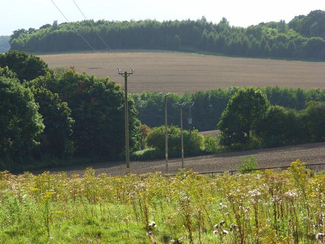 Farmland, Winterbourne - geograph.org.uk - 936796