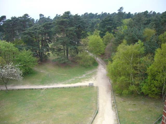 Greensand Way at Leith Hill - geograph.org.uk - 979285