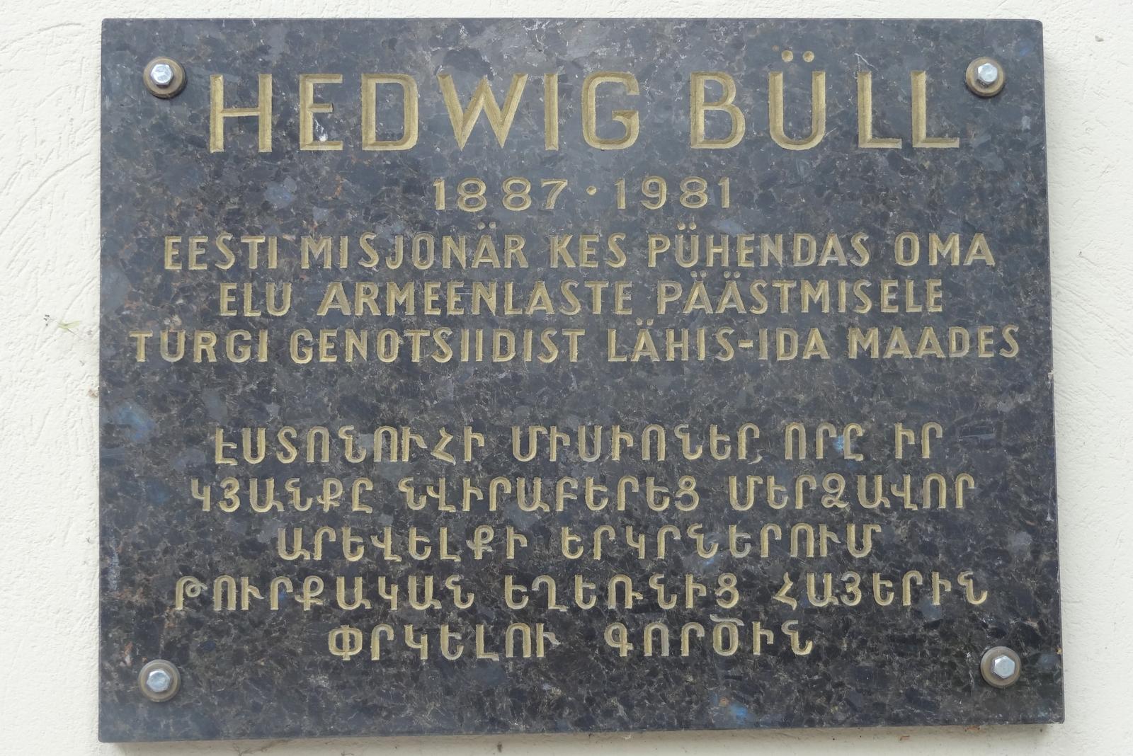 Risultati immagini per Anna Hedwig Büll